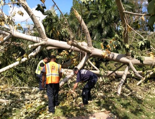 Hurricane Irma Relief Efforts